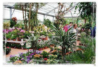 Garden Centre Schilliger Matran